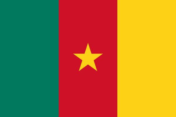 Bandera de Camerun