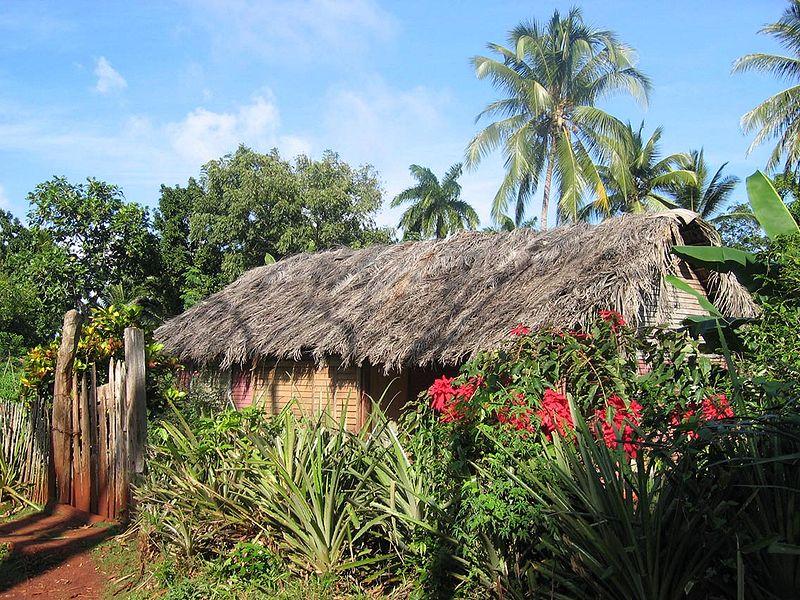 Choza tradicional en las montañas de Baracoa